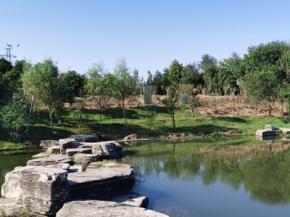 河道生态治理修复项目